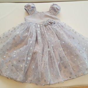 Cherokee Silver Satin Tulle Fancy Dress